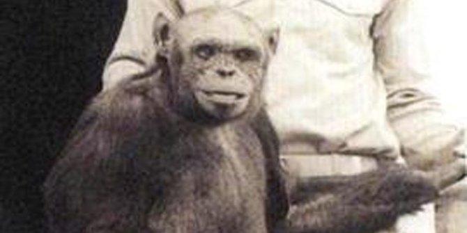 Proyek Kawin Silang Manusia dengan Hewan
